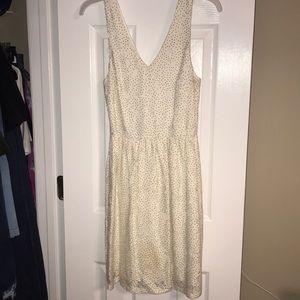 Lace Polka Dot Dress